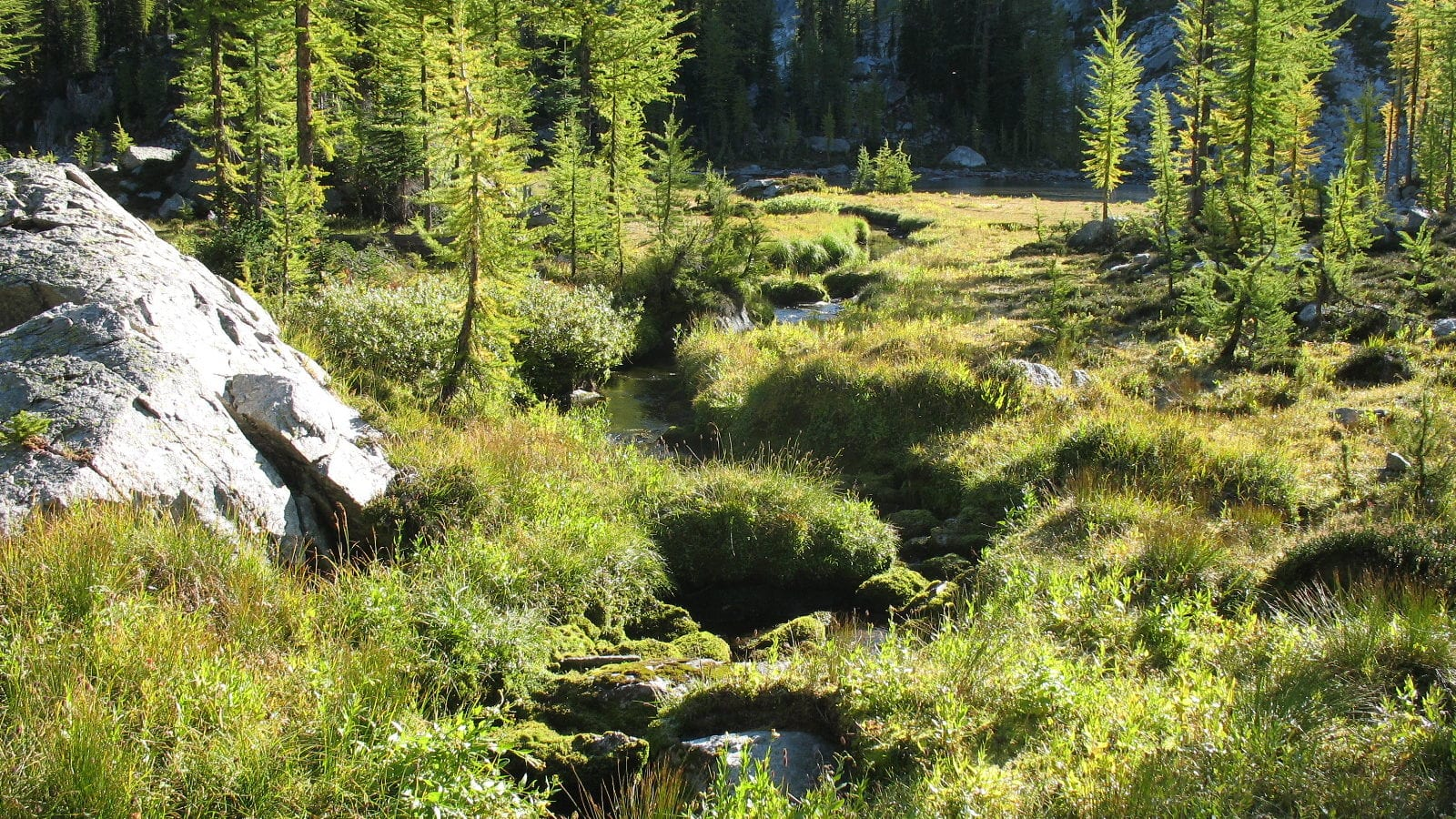 Kaslo and District Community Forest Society